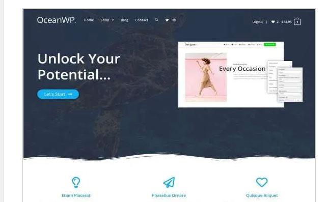 OceanWP tema free e pro para wordpress - Melhores Temas Wordpress Grátis em 2020 Por Categorias de Sites
